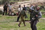 Two Palestinians Injured As Armed Israeli Settlers Attack Farm in West Bank